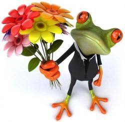 Frosch mit Blumenstrauß
